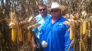 Mace and Keith Philman of 83 Farms, LLC in a corn plot.